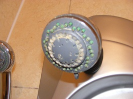 Water Hardness -Shower Head - Click to see full image